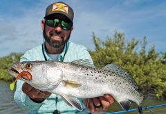 Mosquito Lagoon Speckled Sea Trout