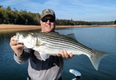 Lake Hiwassee February Stripers and Smallmouth