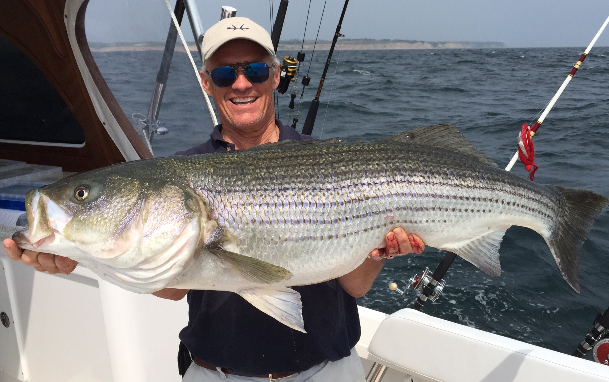 Striped bass coastal angler the angler magazine for Northeast saltwater fishing reports