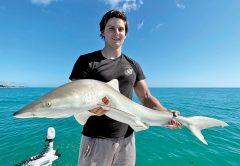 Evan caught this nice shark off the beach!