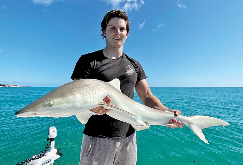 Evan caught this nice shark off the beach!