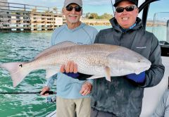 Fred from Jacksonville with one of the big redfish from Sebastian Inlet!