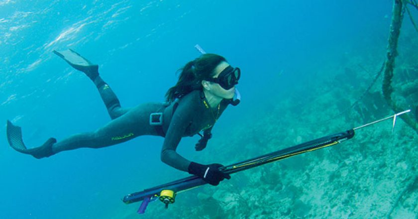 difference between scuba diving and freediving essay Discover the similarities and differences between the two water  freediving and scuba diving sometimes seem like they are two teams that are battling it out.