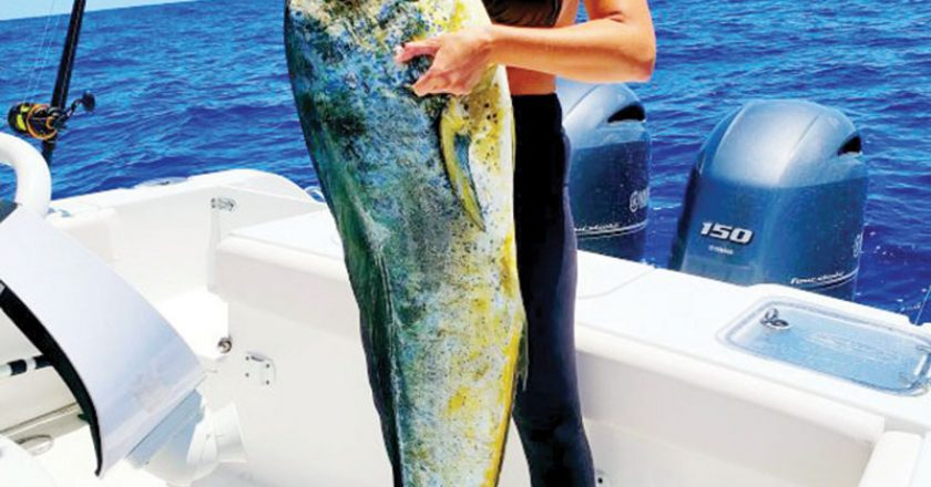 Jennifer Hodge hauled in this monsterous mahi fishing about 50 miles east of the Brevard coastline.