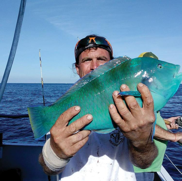 catch my drift fishing - Fishing-Tips.Info