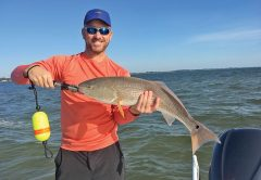Rick Renfo with a slightly over-slot sized redfish caught on a live fingerling mullet.