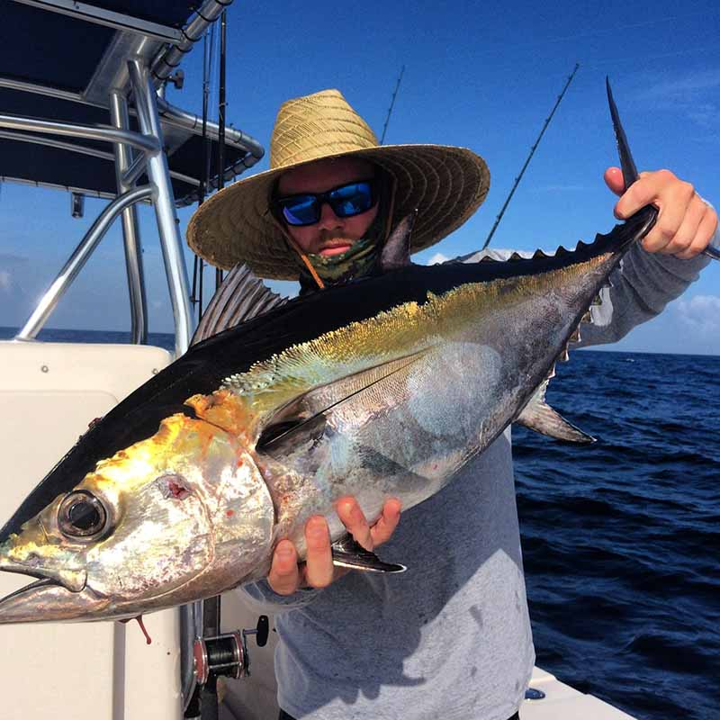Go fly a kite coastal angler the angler magazine for Kite fishing for tuna