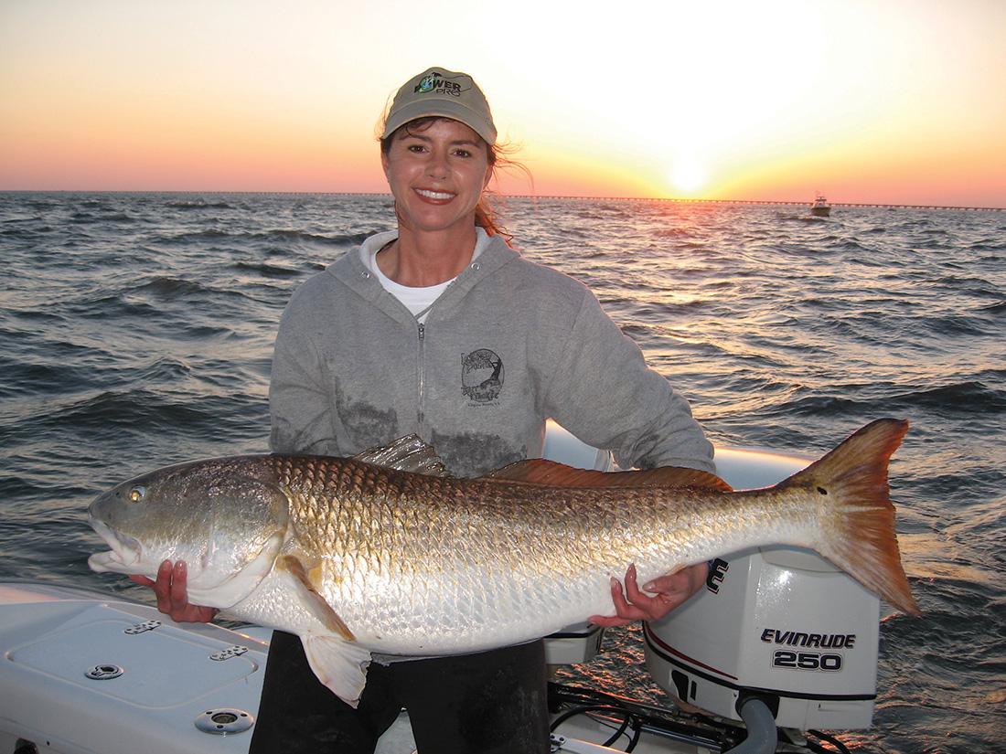 Virginia beach sportfishing rundown dec 39 16 coastal for Lynnhaven inlet fishing report