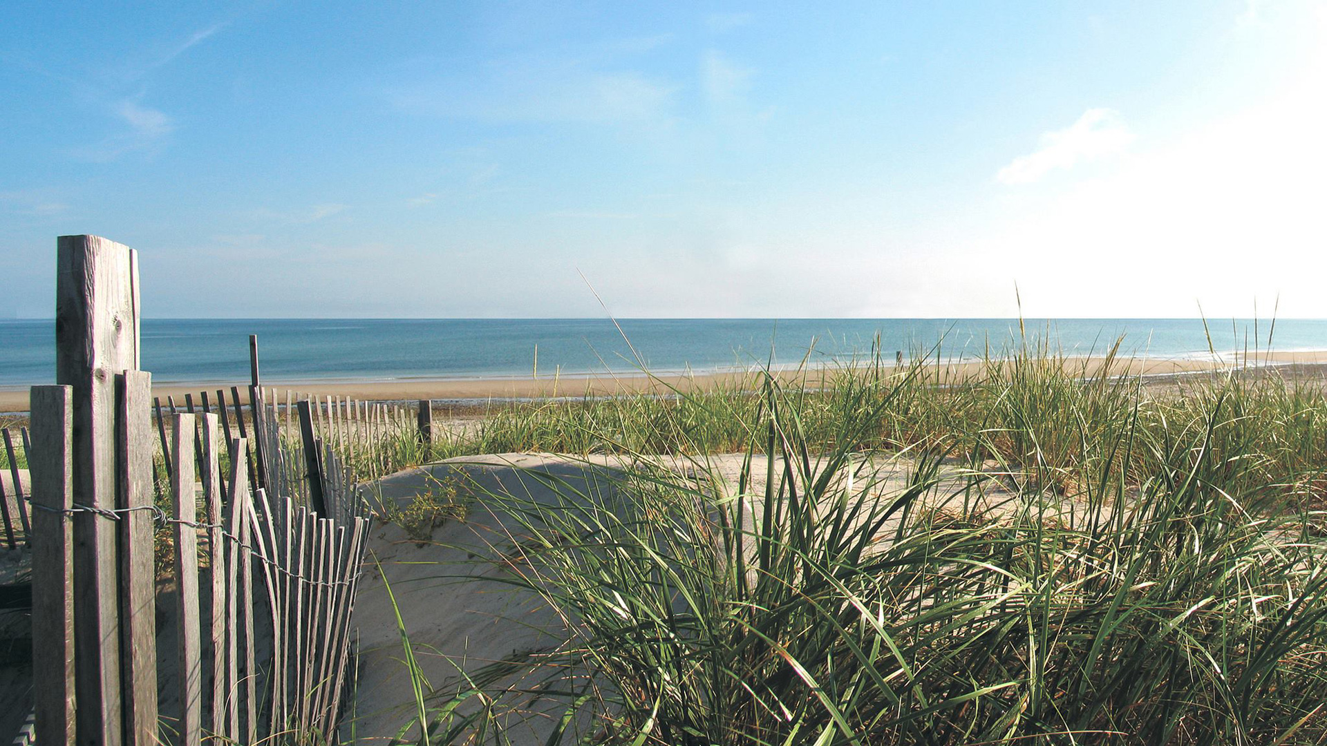 Tidewater outer banks edition coastal angler the for Outer banks fly fishing