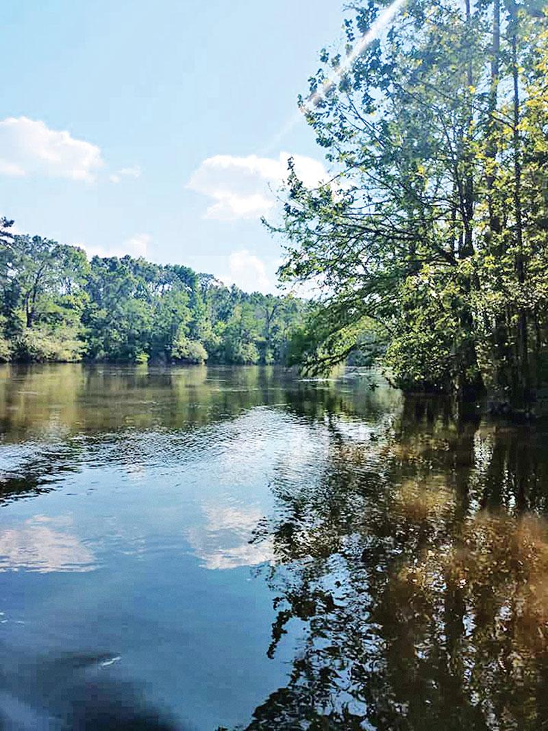 Georgia's Flint River Shoal Bass