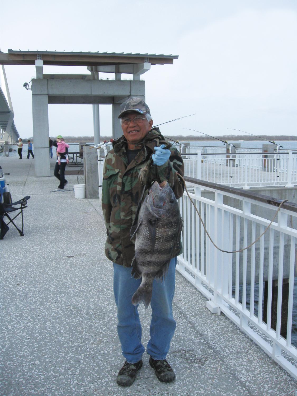 Mt pleasant pier fishing forecast coastal angler for Mt pleasant fishing pier