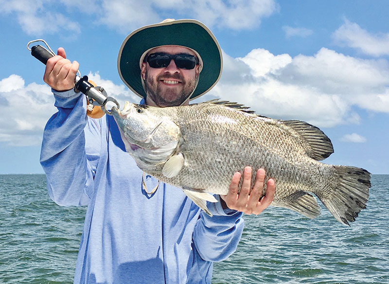 Another giant tripletail caught with Robinson Brothers.