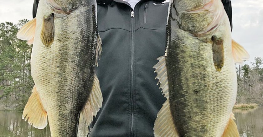 Big Seminole bass fear Capt. Paul Tyre when he shows up with his clients.
