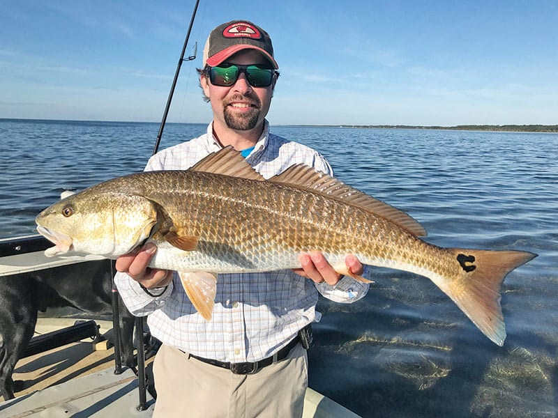 Apalachicola indian pass st joe bay feb 2018 for Apalachicola fishing report