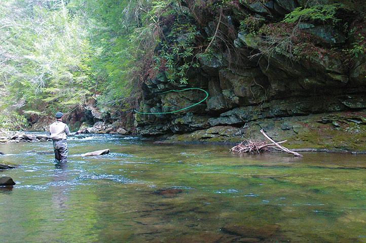 Wilderness trout fishing on the jacks river coastal for Island beach state park fishing report