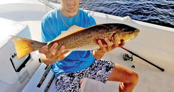 Dylan Shingler getting in some redfish action with Dad.