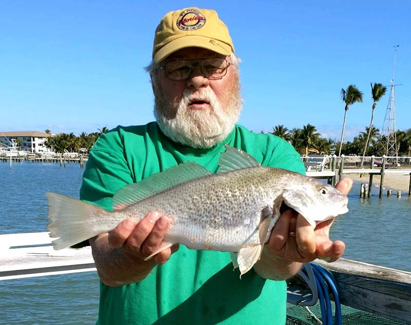 Fort pierce inshore fishing report and forecast march for Indian river inlet fishing tips