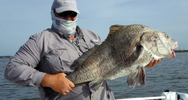 Coastal angler magazine galveston edition coastal for Bay fishing galveston
