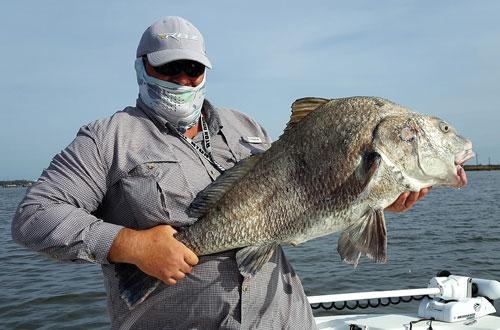 Capt lambert galveston bay fishing report coastal for Galveston fishing report