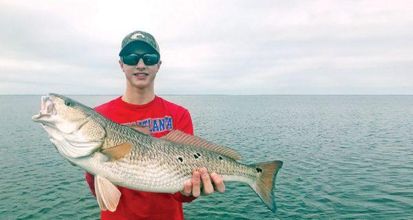 St joe bay indian pass fishing forecasts coastal for Apalachicola fishing report