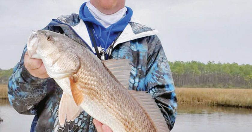 Kevin Iferd,owner Iferd's Automotive, offers complete automotive repair and the occasional tip to improve your redfish game.