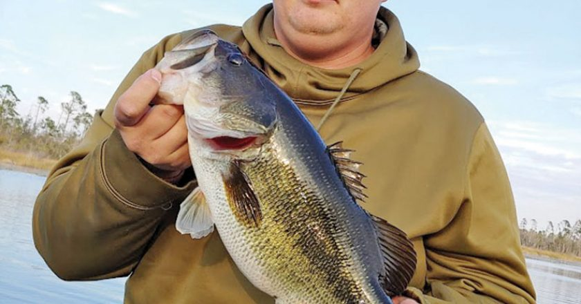 Sam caught this fine Deerpoint Lake bass swimming a Gambler Burner worm in the pads.