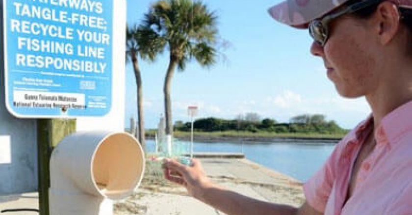 Treasure coast florida fish and wildlife conservation for Florida free fishing days