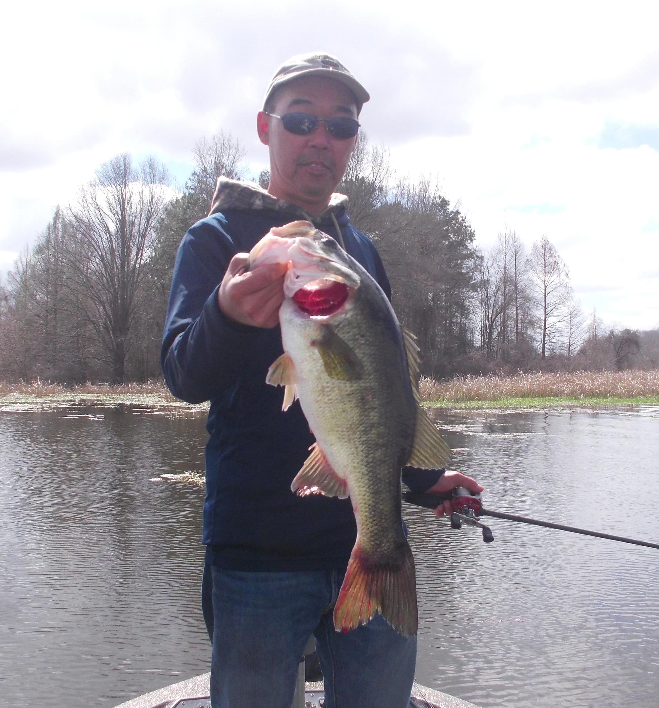 Big eufaula bass coastal angler the angler magazine for Lake eufaula fishing report
