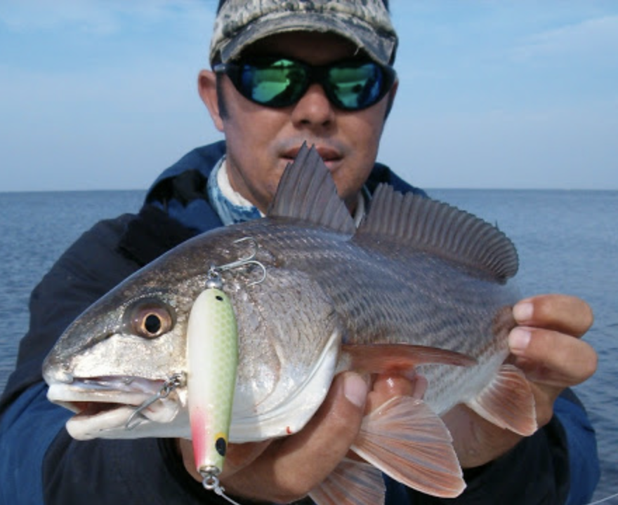 spring fishing by capt dave stephens coastal angler
