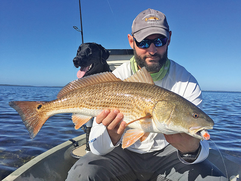 Capt. Jarret Johnson caught this stud redfish on the new Rapala Skitter V while fishing with me and Murphy dog in St. Joe Bay.