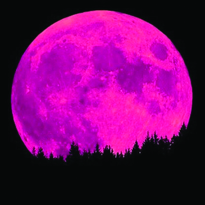 April 11th Full Pink Moon Coastal Angler The Angler
