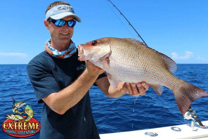 Fish smarter for mangroves coastal angler the angler for Nysdec fishing regulations