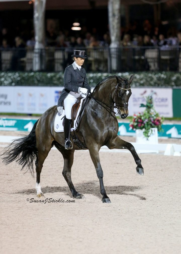 The Winter Equestrian Festival And Adequan 174 Global