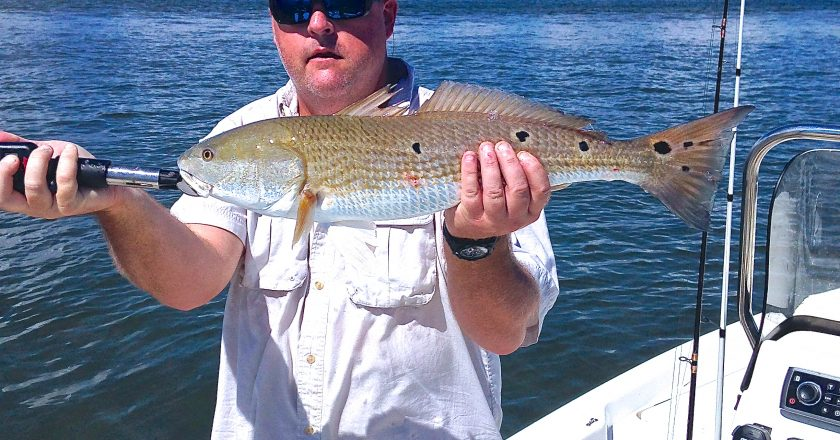 Lanark fishing reports archives coastal angler the for Big bend fishing