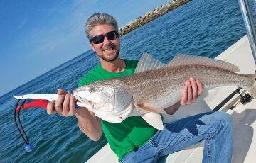 Steve with a nice bull red