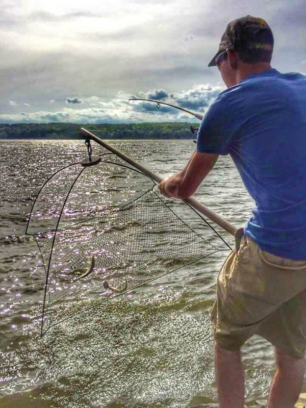 Spring Striped Bass Run the Hudson River | Coastal Angler ...