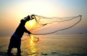 cast netting for bait
