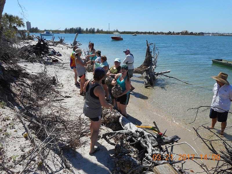 St lucie county artificial reef program habitat for Costa rica fishing calendar