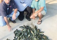 Cliff Straughn, Paul Tyre and Nic Jeter with a nice mess of Shellcracker.