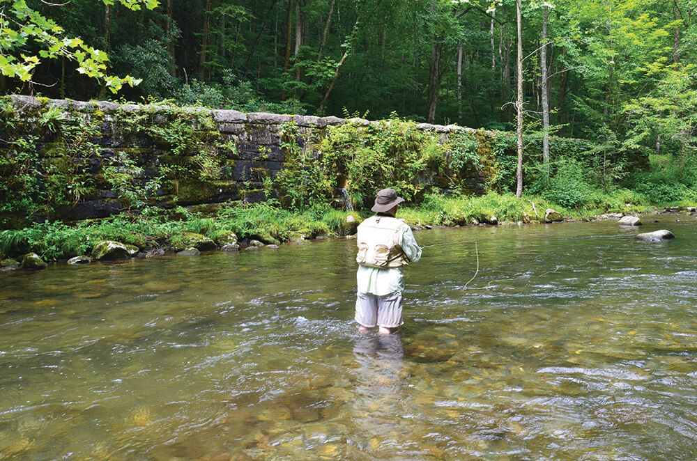 Trout fishing north carolina s oconaluftee river coastal for Fly fishing north georgia