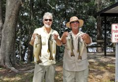 Tim and Dr. Doug with some nice bass caught on Talquin with a spinnerbait