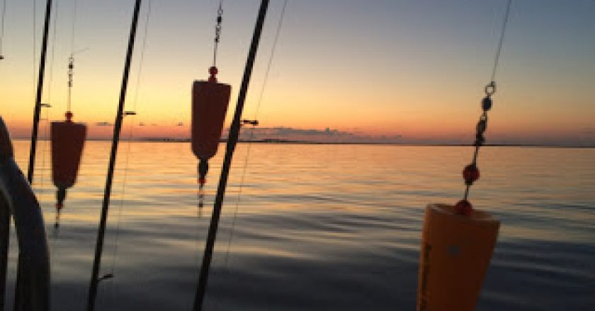Mississippi gulf coast edition archives coastal angler for Gulf shores inshore fishing