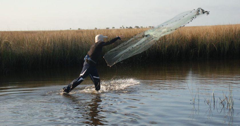 Big Bend Wade Fishing Archives Coastal Angler The