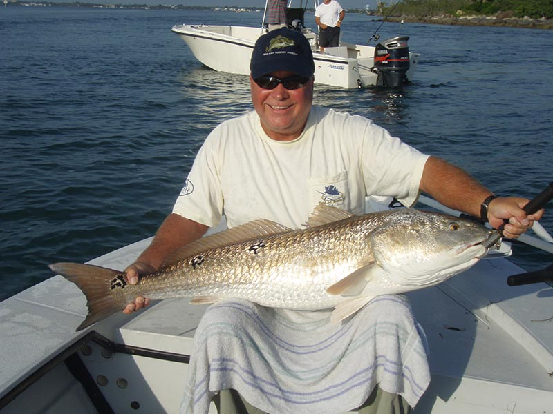 Sebastian area inshore fishing report and forecast july for Sebastian fishing report