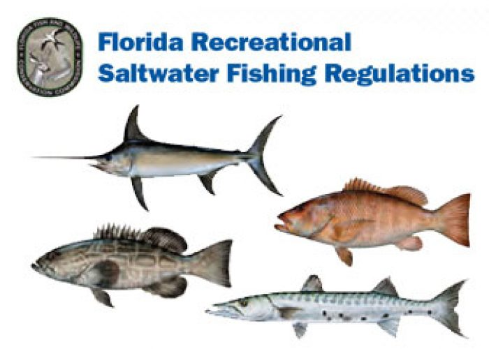 Florida keys fishing reports news boating other for Florida freshwater fishing license