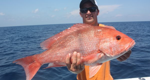 Florida federal snapper season 2017 download pdf for Florida saltwater fishing regulations