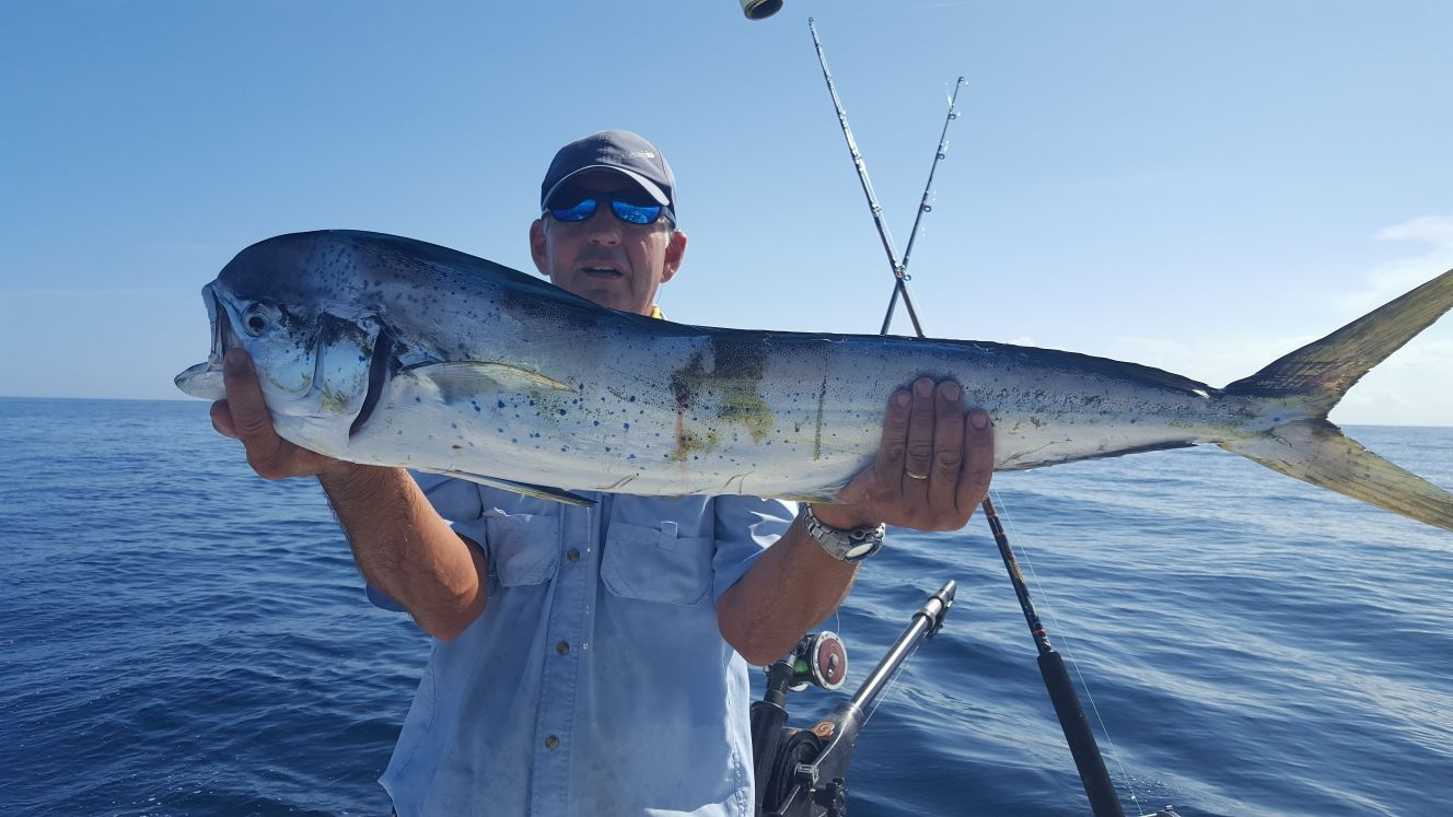 Deep water dolphin coastal angler the angler magazine for Indian river inlet fishing tips