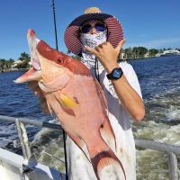 Big hogfish caught aboard Catch My Drift.