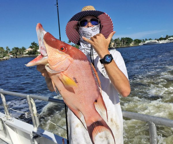 Big hogfish caught aboard Catch My Drift.