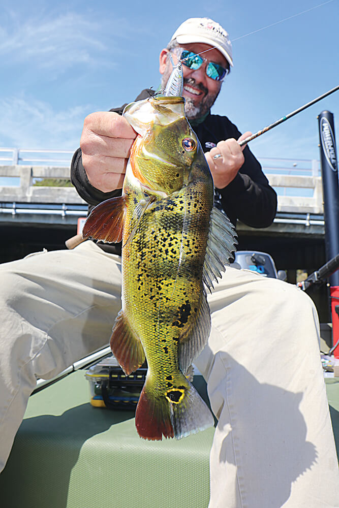 Keep your eye on the hook coastal angler the angler for Fishing hook accidents
